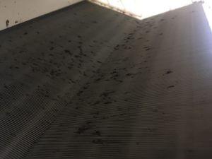 熱交換器の裏の汚れ